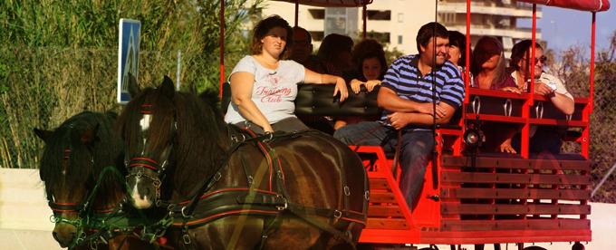 Paseo en carreta por Peñiscola